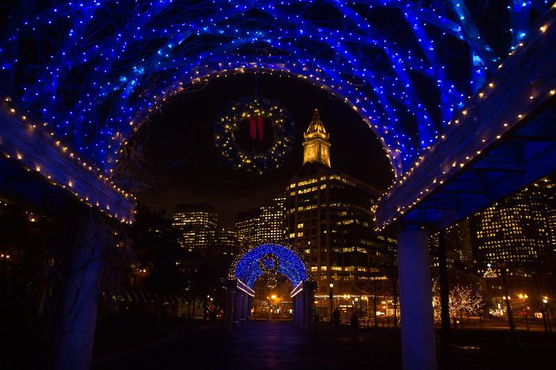 2012-11 | CCP Trellis Lighting 126