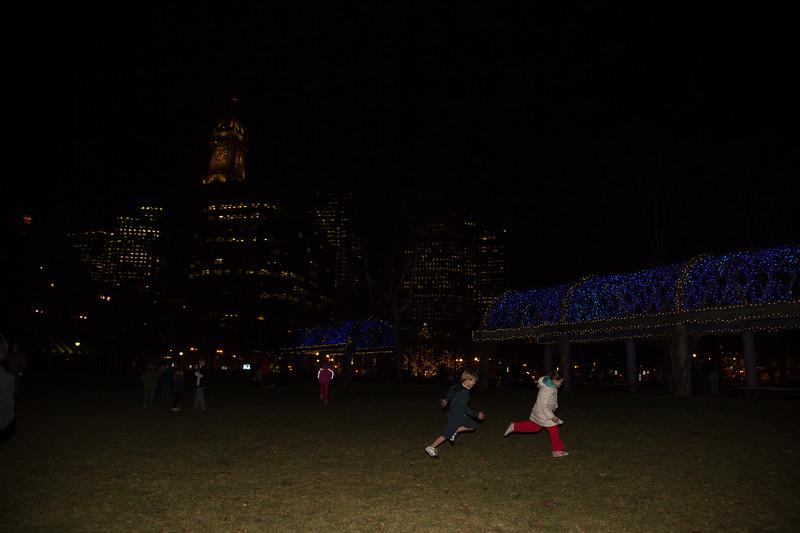 2012-11 | CCP Trellis Lighting 59