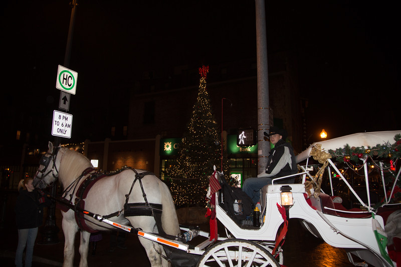 Free carriage rides for all the kids!