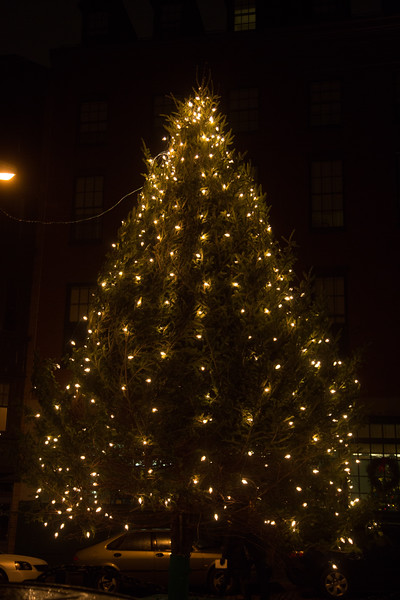 2012-12   Concerto di Natale: Christmas in the North End