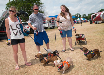 15th Annual Buda Country Fair and Wiener Dog Races AT Buda City Park