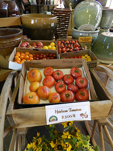 Tomato Festival and Purses For Pets