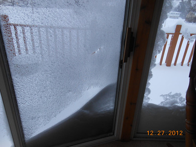 Trying to look out of our sunroom.