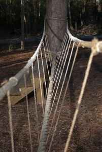 A rope bridge between to trees challenges children who play at Herman Little Park.