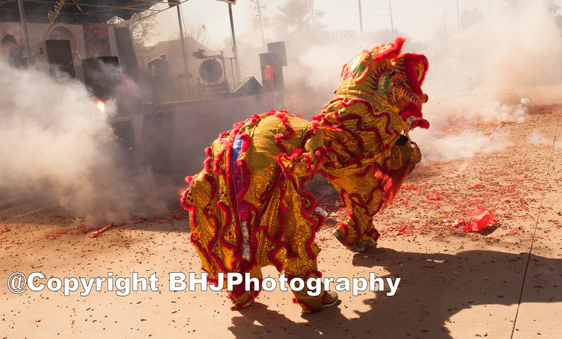 Shaolin Kung Fu Academy Lion Dance & Firecrackers.