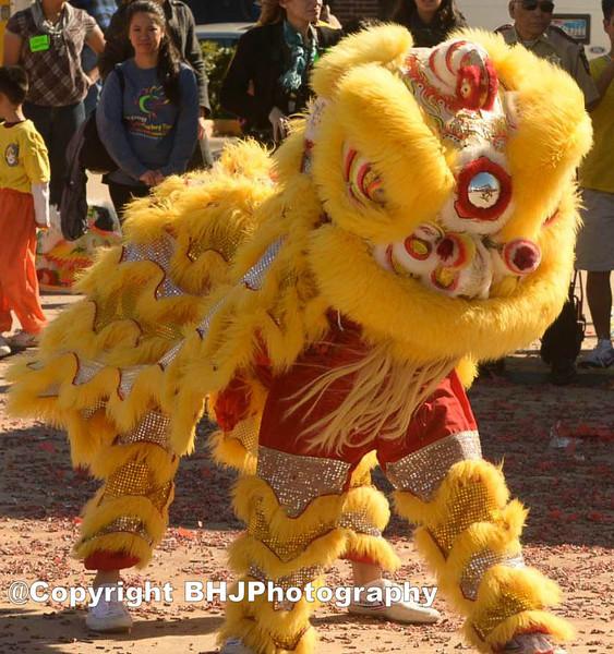 Shaolin Kung Fu Academy Lion Dance.