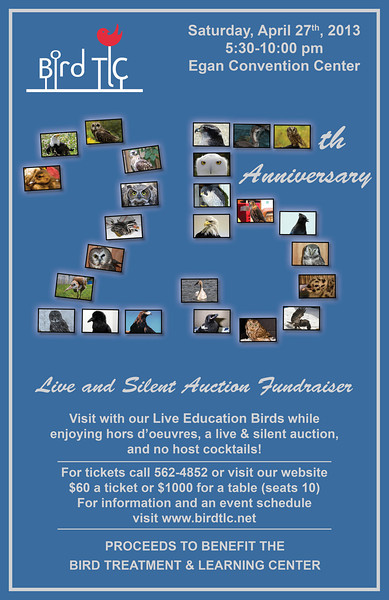 2013 25th Anniversary / Live & Silent Auction