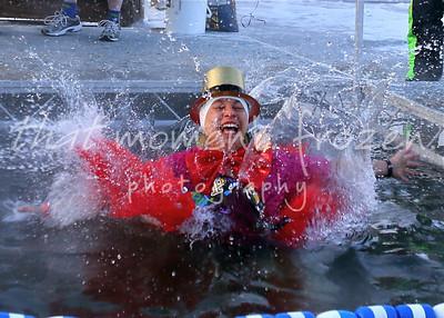 2013-01-01 ALARC Ice Dive - Dive Times: 8:45-9:00
