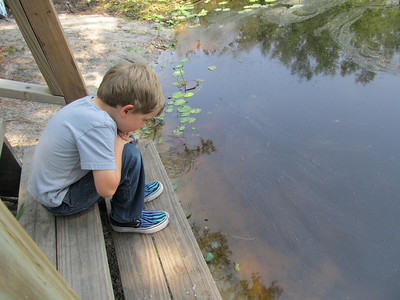 Nik watching the life in the shallows. Lots of fish and tadpoles.