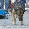 13LTMarch_15 - Tango had handler Amanda<br /> 2013 IFDA Weight Pull Event - March 16 at Downtown Fairbanks