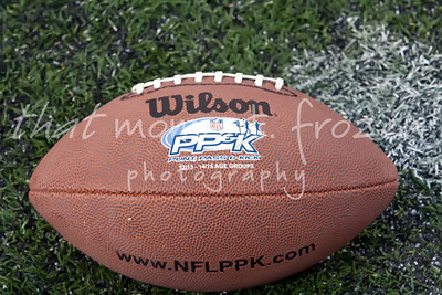 2013 NFL PPK Sectionals