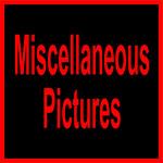 A WWSL MISC-11105