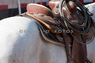 2013 The 64th Annual Taylor Rodeo Day 1