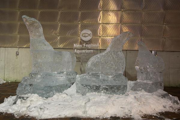 Fur Seals Ice Sculpture at New England Aquarium