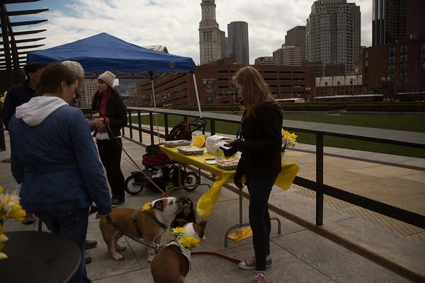 RUFF Dog Show at Daffodil Day - 2013-04-14 at 12-22-35