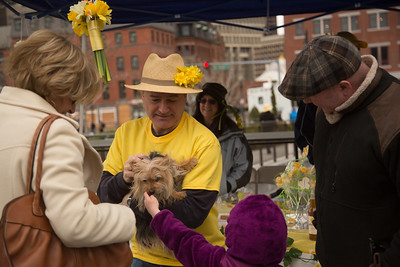 2013-04 | Daffodil Day on the North End Greenway Parks 170 - 2013-04-14 at 13-09-15