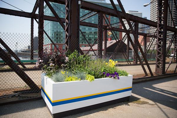 2013-06 | Harbor Link Gardens on Old Northern Ave Bridge 82 - 2013-06-25 at 11-24-38
