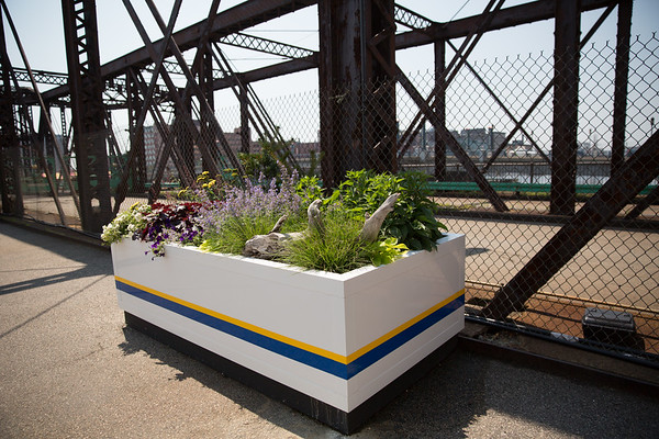 A hardy selection of plants were selected for the exposed bridge area - 2013-06-25 at 11-25-10