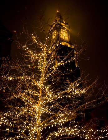 Lighted tree under the Custom House Tower