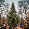 Lighting the Prado Tree