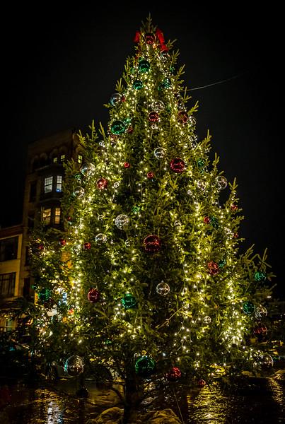 2013-12   Cross Street Tree Lighting