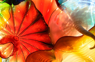 Chihuly at the Virginia Museum of Fine Arts