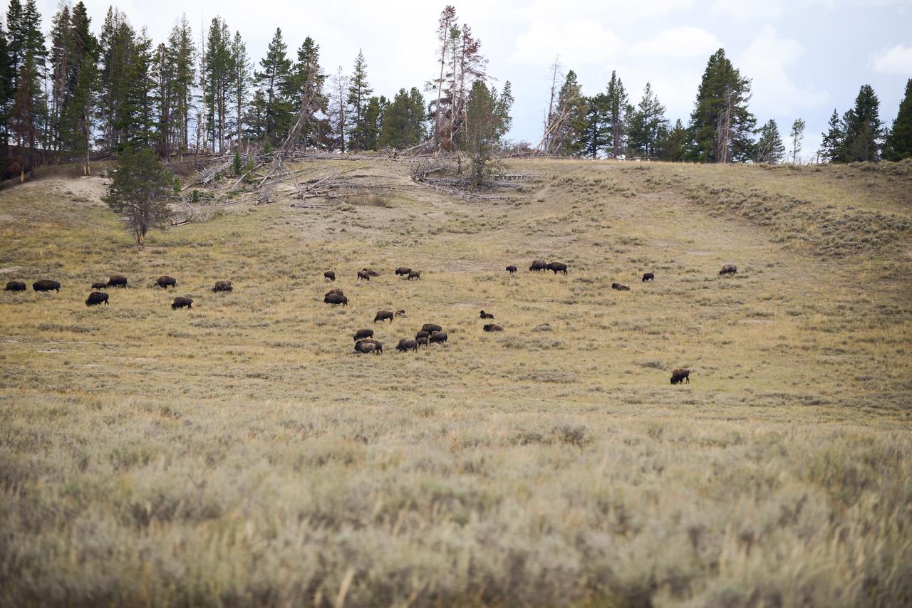 2013 09 07 18 27 Montana 11850