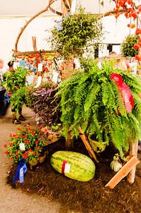 State Fair - Gardening Display