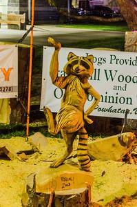 State Fair - Raccoon Chainsaw Carving
