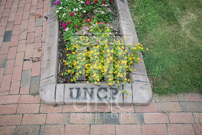 UNCP holds a Welcome Back Party at the Chancellor's Residence on Tuesday, August 13th, 2013. welcome_reception_1844.JPG
