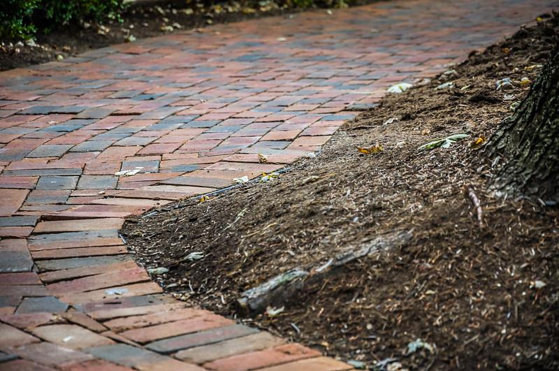 Gervasi paver walkways