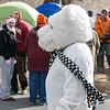 Polar Bear Plunge-03887-2