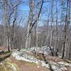 20130314 Mill Mountain (8)