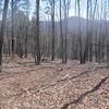 20130314 Mill Mountain (12)