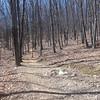 20130314 Mill Mountain (14)