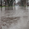 20130418-Flooding-5089