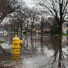 20130418-Flooding-5081