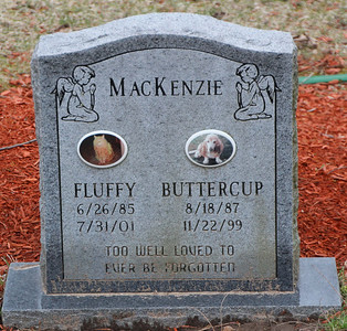 Rush Inter Pet, Inc. Pet Cemetery (RIP Fluffy and Buttercup)