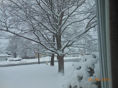 Front yard Feb. Snowstorm