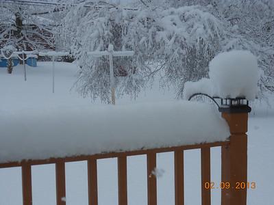 Back yard Feb. Snowstorm