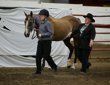 2014 4H Special Needs Horsemanship