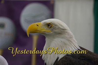YesterdaysPhotos com-_DSC7762