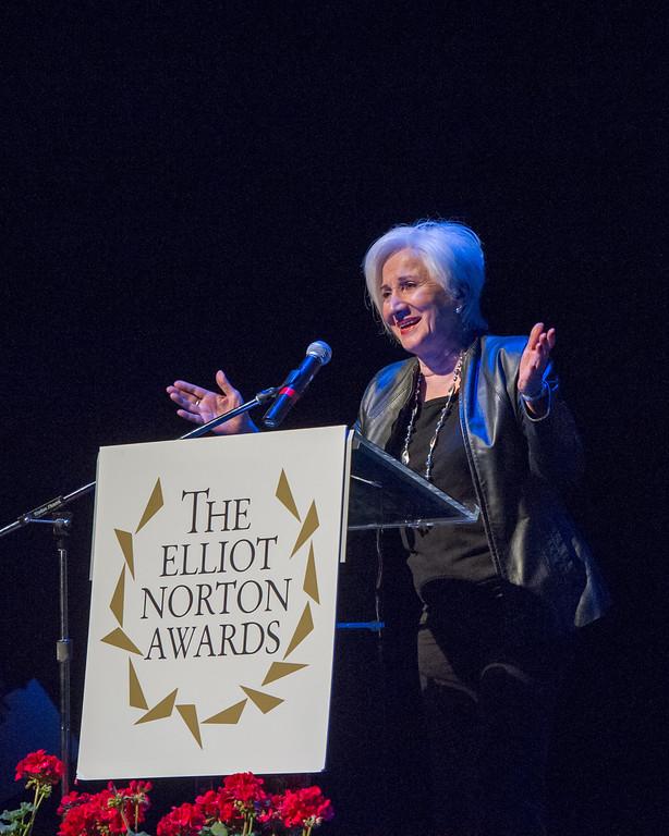 2014 ELLIOT NORTON AWARDS