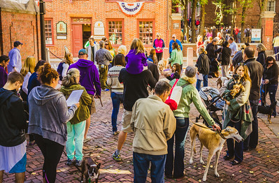 Blessing of the Animals in Boston's North End