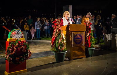 FOCCP President, Joanne Hayes-Rines speaks at the trellis lighting event next to the big switch