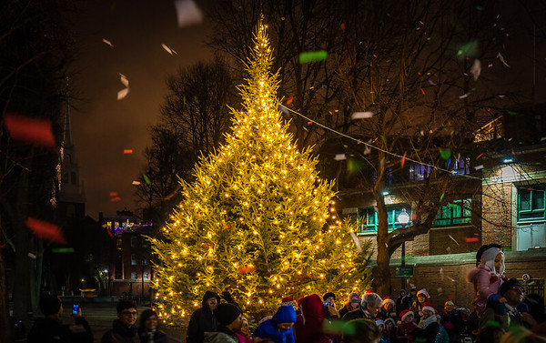 Prado - Paul Revere Mall Christmas Tree Lighting