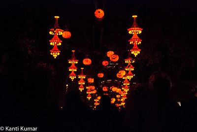 Tivoli during Halloween 2014