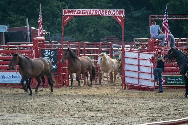 2014 Lockwood Park Big Hat Rodeo