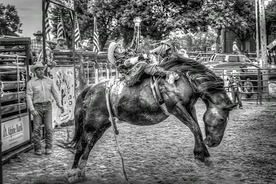 Lockwood Park - Big Hat Rodeo