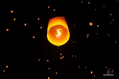 20141018-Rise-Lantern-Festival-124